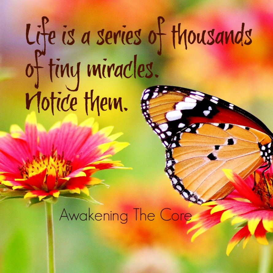 atc Tiny Miracles