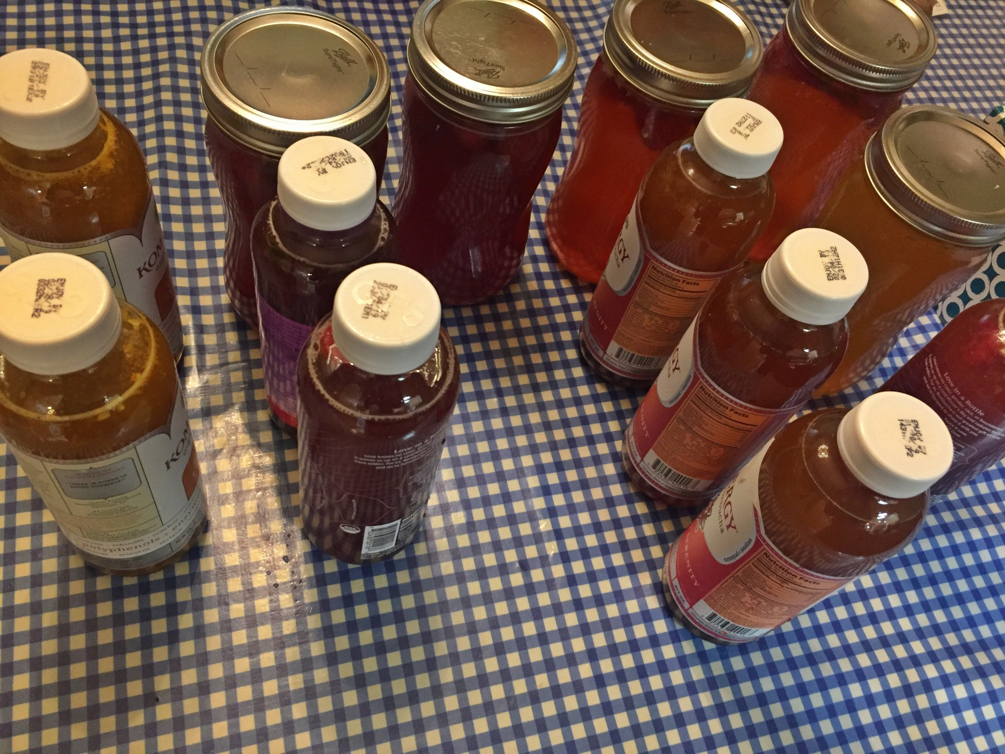 Fizzy Fun with Kombucha